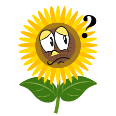 Thinking Sunflower