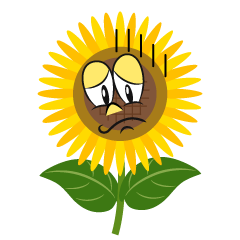 Depressed Sunflower