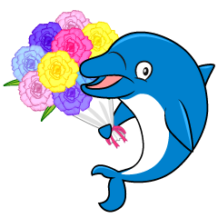 Dolphin with Gift