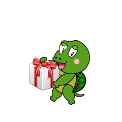 Turtle with Gift
