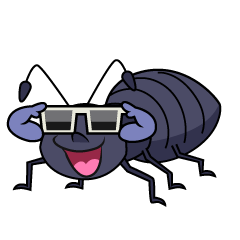 Cool Ant